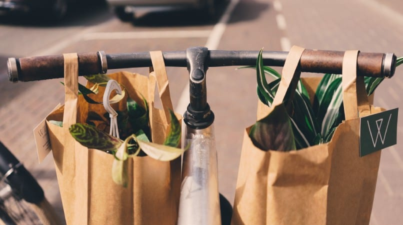 bags of groceries on a bike